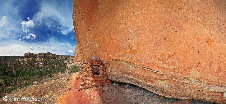 ANCIENT GRANARY AND PICTOGRAPH PANEL IN BEARS EARS NATIONAL MONUMENT
