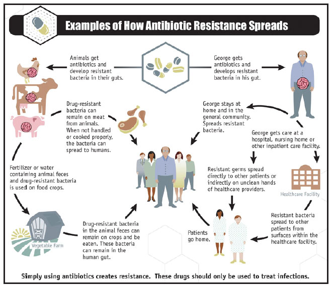 EXAMPLES OF HOW ANTIBIIOTIC RESISTANCE SPREADS