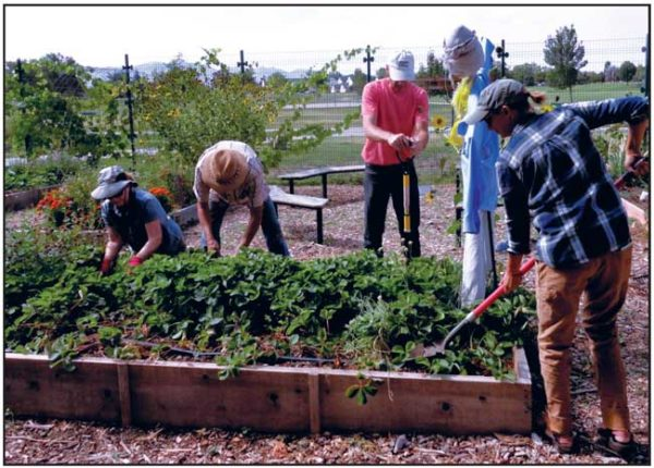 CORTEZ RECREATION CENTER COMMUNITY GARDEN VOLUNTEERS