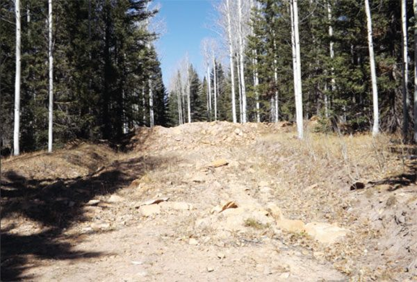 CLOSED HISTORIC WAGON ROAD IN THE HAYCAMP AREA OF THE SAN JUAN NATIONAL FOREST
