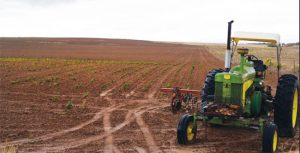 A tractor with cultivators sits in a Dove Creek beanfield, where it was last parked — before drought destroyed most dryland crops across the region.