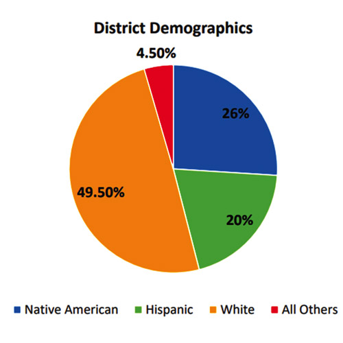 This graph shows demographics of students in the Montezuma Cortez Re-1 School District.