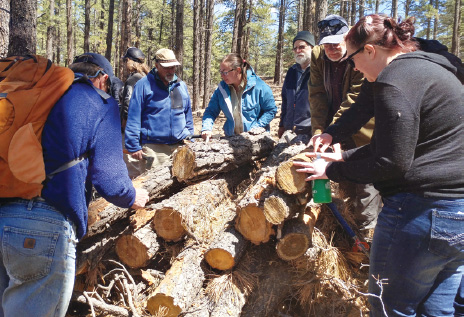 DWRF and Wildfire Adapted Partnership hosted several opportunities to learn about beetle identification and management in the forest with Colorado State Forest Service and USFS entomologists at Butler Corner in spring 2018.