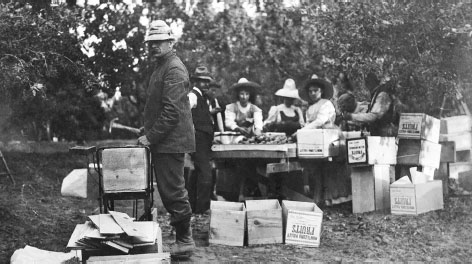 People making crates for packing fruit in McElmo Canyon, circa 1900.